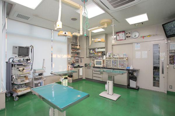 小儀動物病院photo